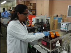 PhD Fellowship Available in Bioproducts/Bioeconomy Development